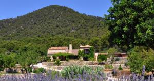 Venta directa de villa rústica de lujo en Alaró